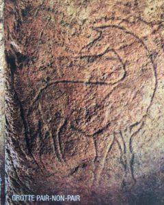 La grotte de pair non pair en Gironde cheval gravé