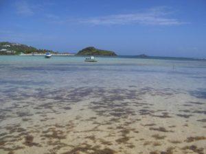 St Barth plage 2