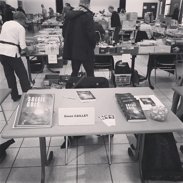 Soleil gris salon livre Plougrescant 2019